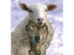 Wolves Among the Sheep: Sexual Predators in the Church